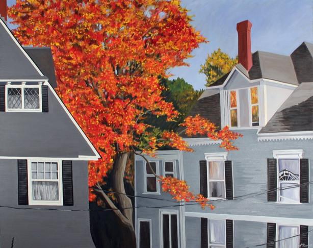 Brewster Street Houses