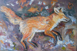 Sleeping Fox 36x24