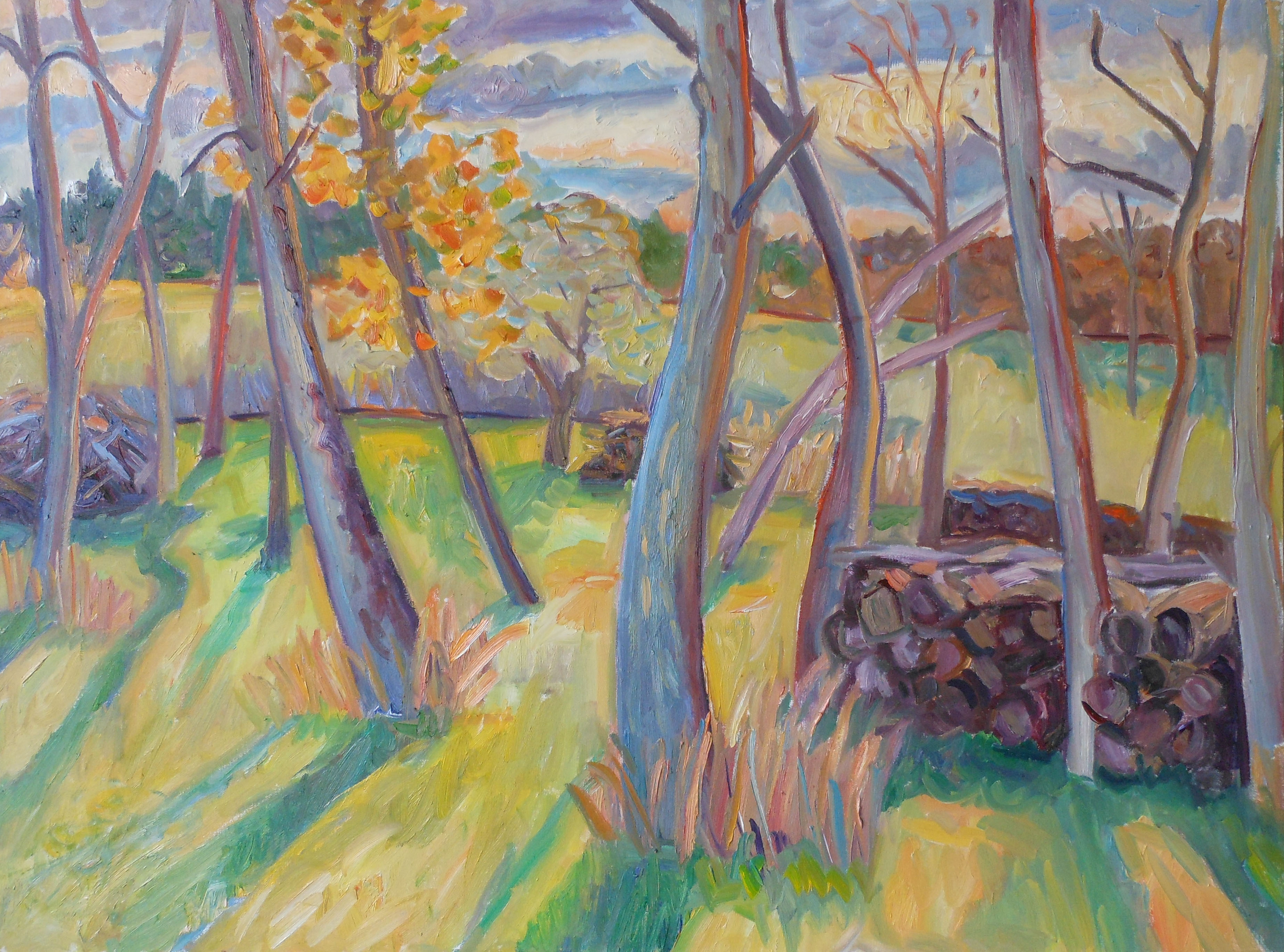 Late Afternoon Copse 30x40