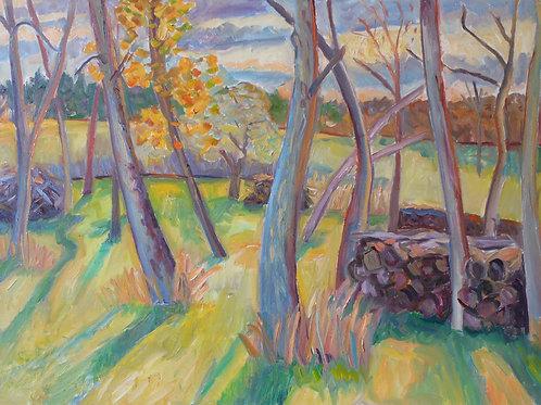 Berkshire Landscapes