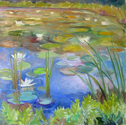 Waterlilies Summer Pond 30x30