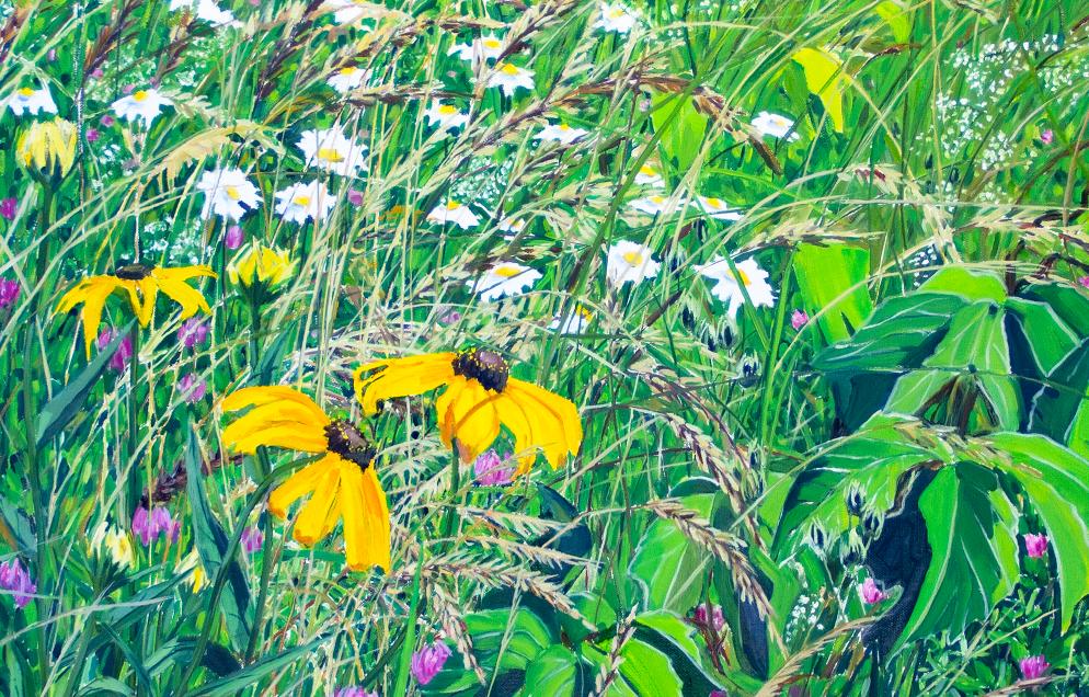 Elongated Meadow