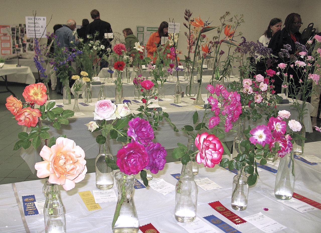 LAGC Flower Show 2008