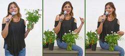 Loretta Allison - The Healing Garden