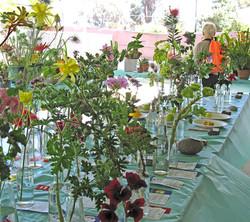 LAGC Flower Show 2014