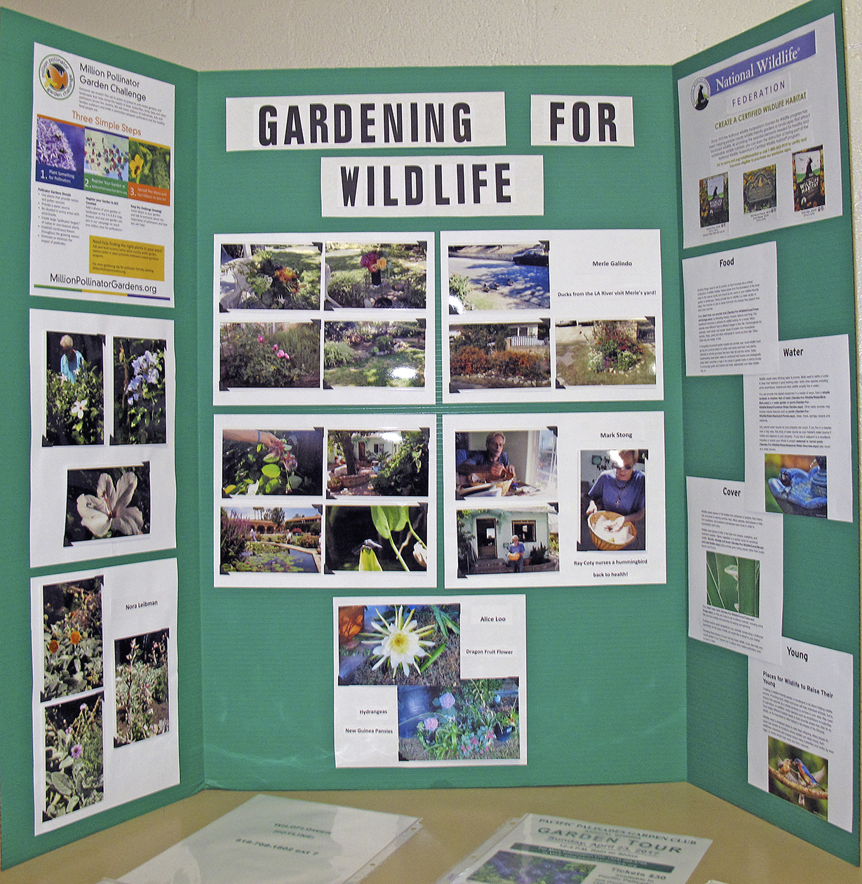 LAGC Gardening for Wildlife