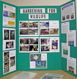 LAGC Gardening for Wildlife