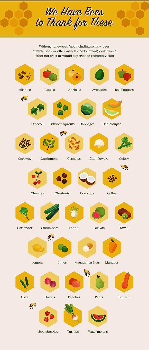 no-bees-no-food.jpg