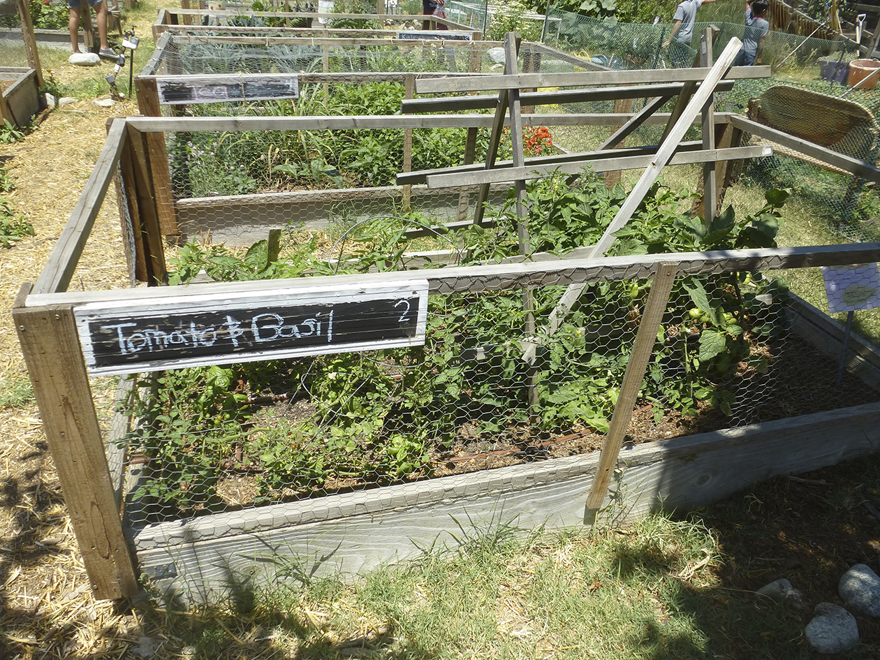 EnrichLA Garden at Taking the Reins