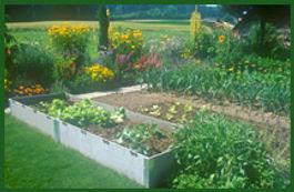 Los Angeles Garden Club Plan Your Perfect Garden