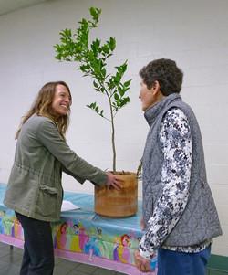 Joanna Glovinsky - Fruit Tree Care