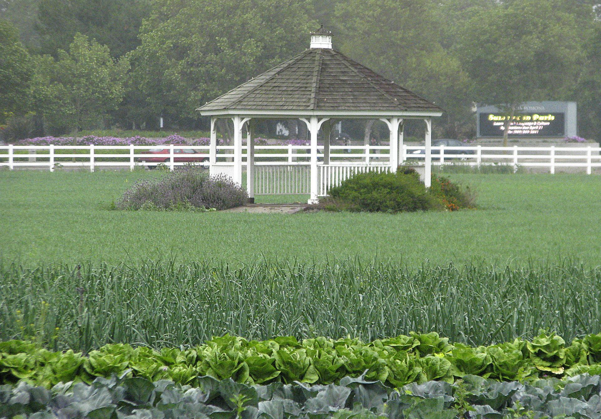 Kellogg Farm