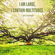I am large, I contain multitudes
