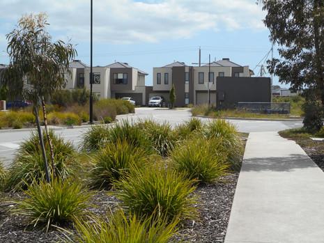 Landscape plan for subdivision