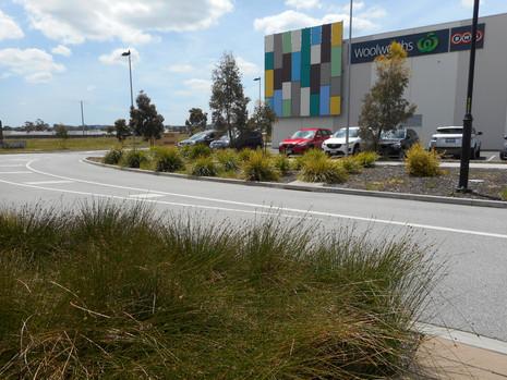 Landscape plan supermarket