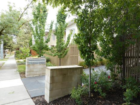 Landscape plan residential development