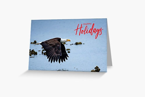 Bald Eagle in Flight - 5x7 Greeting Card (Pack of 8)