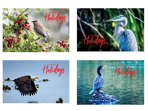 Birds of the Pacific Northwest Variety Pack - 5x7 Greeting Card (8-pack)