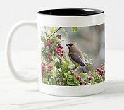 waxwing-mug.jpg