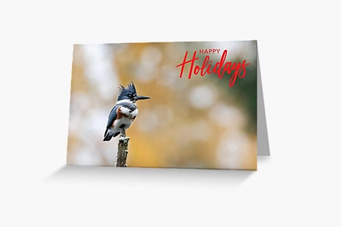 Belted Kingfisher - 5x7 Greeting Card (Pack of 8)