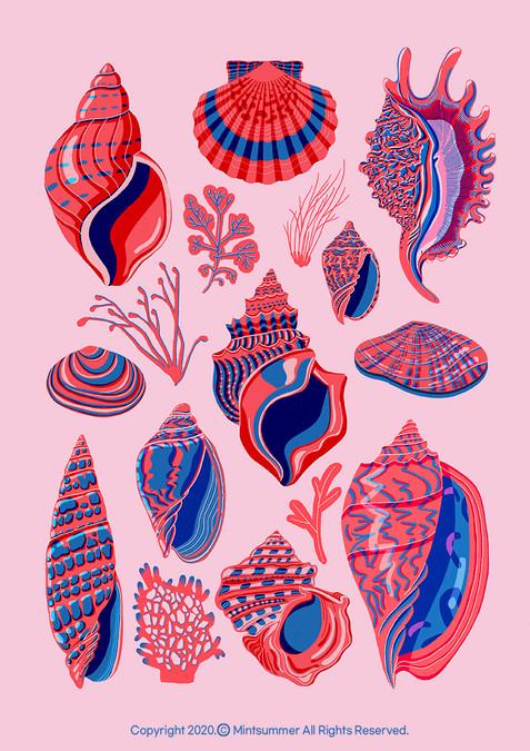 Shellfish collection