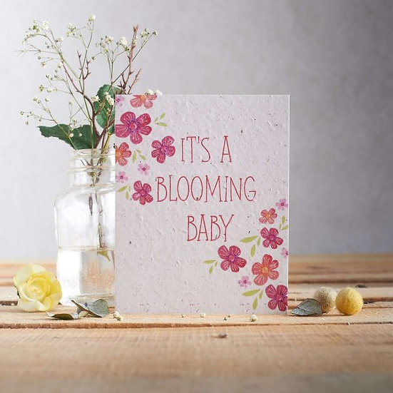 It's a Blooming Baby (Pink) - Wildflower Plantable Seed Card