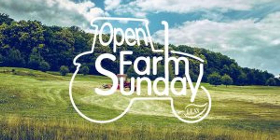 🐑🌿🚜 OPEN FARM SUNDAY 🚜🌿🐑