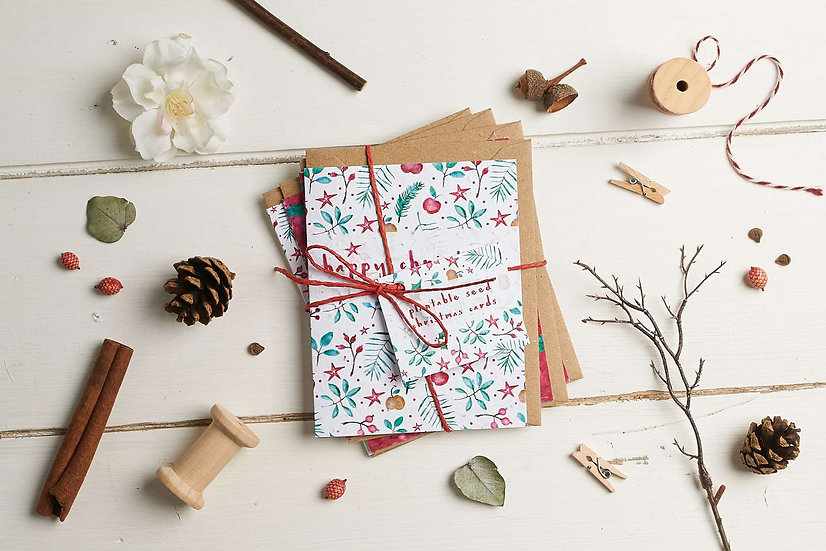 Pack of 4 Christmas Seed Cards
