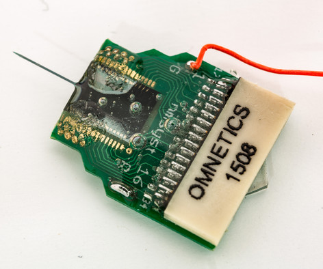 Standard silicon microeletrode array with omnetics connector