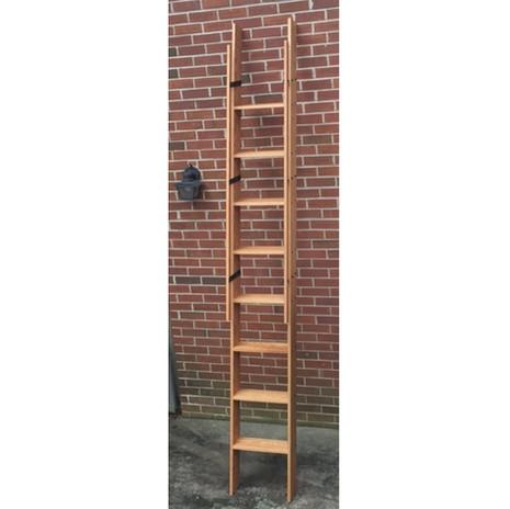 Library Ladder Artfxwoodworks