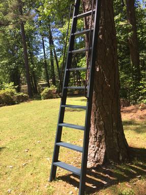 orchard ladder, tapered ladder, wooden ladder, loft ladder, library ladder