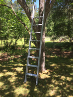 wood ladder sleek design