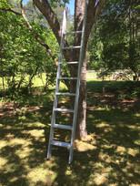 wood ladder sleek design