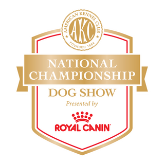 2018 AKC National Championships Group and Best in Show Judging