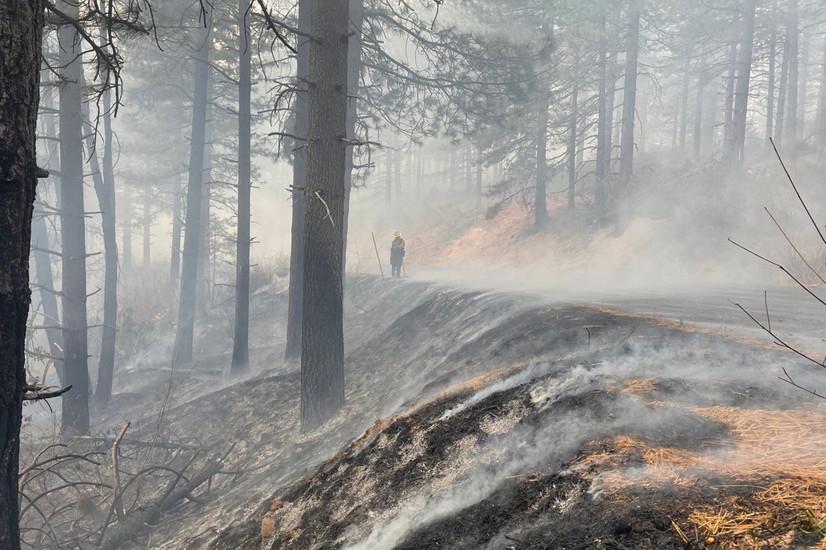 Prescribed Fire TRaining EXchange -    Cal-TREX Yuba (Nordkalifornien)