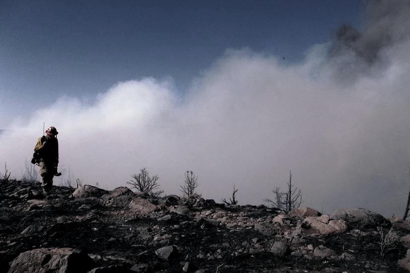 Tragedy Fires- Der Faktor Mensch:  International wildland fire safety summit
