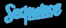 Sequence-logo-website-light.png