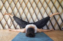 dragon fly au mur yin yoga Angers