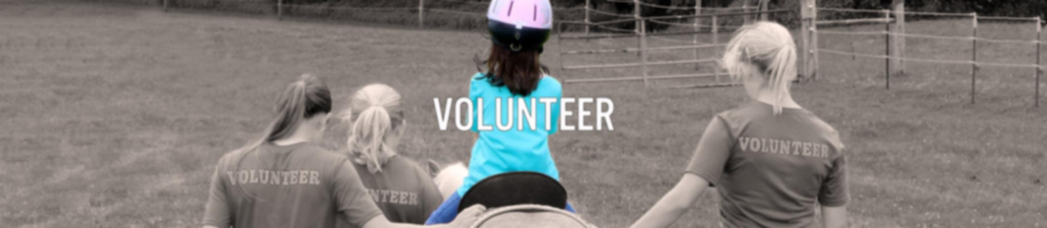 Volunteer2TEXT.jpg