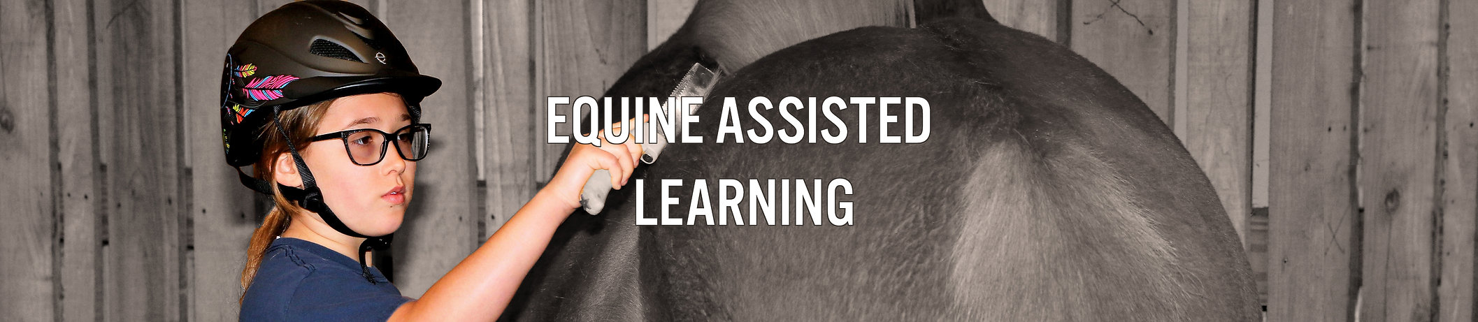 Equine Assisted Learning2TEXT.jpg