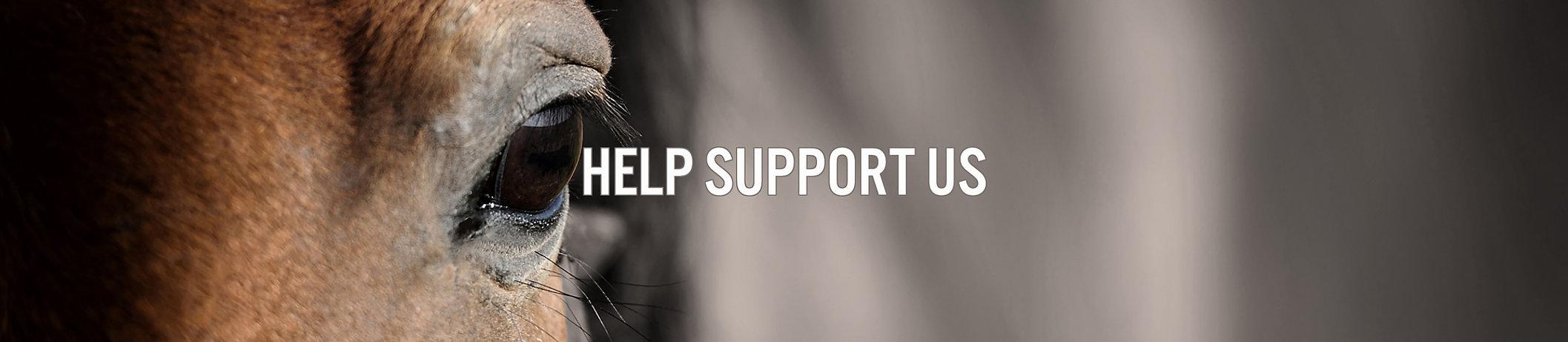 HELP SUPPORT US.jpg