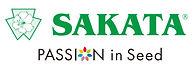 Sakata.jpg