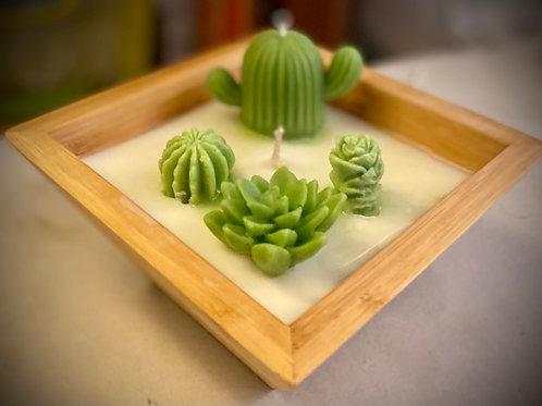 Succulent Candle Cactus Garden