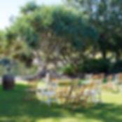 website - vintage chairs.jpg