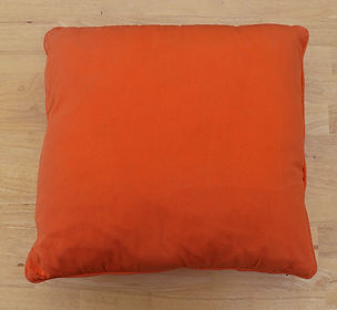 burnt orange cushion.JPG