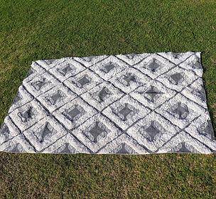 checkered rug.JPG