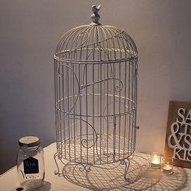 bird cage suitcase