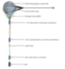 Schéma de la bouée Hypatia, balise pour mesurer les paramètres environnementaux marins CTD (température, salinité, luminosité)