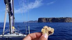 Navigation à la voile vue sur les falaises de Majorque