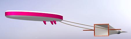 Le paddle trawl, un concept innovant pour étudier la pollution plastique avec une planche de paddle surf